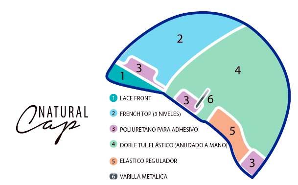 esquema de la base natural cap