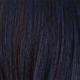 Blueberry Burst