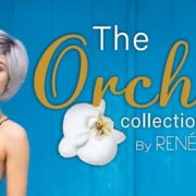 Portada catálogo The Orchid 2020